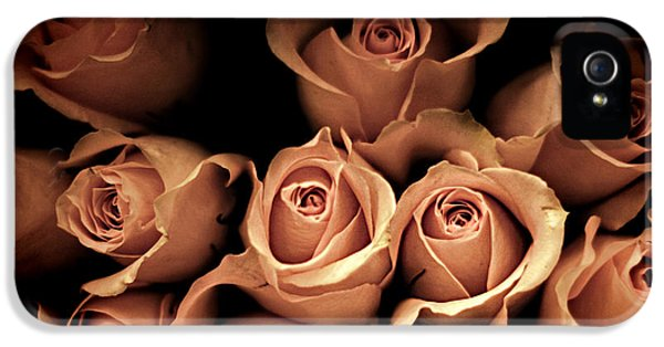 Roses iPhone 5 Cases - Desire iPhone 5 Case by Amy Tyler