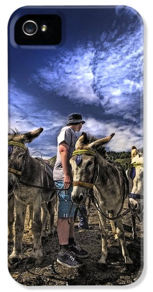 Donkey iPhone 5 Cases - Donkey Rides iPhone 5 Case by Meirion Matthias
