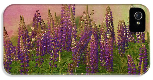 Lupin iPhone 5 Cases - Dreamy Lupin iPhone 5 Case by Deborah Benoit
