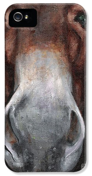 Donkey iPhone 5 Cases - Fannie iPhone 5 Case by Frances Marino