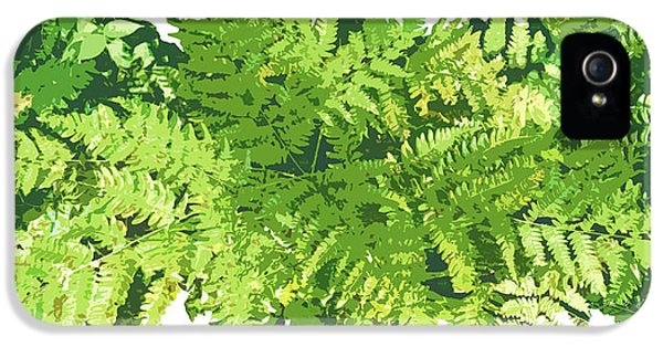Fern iPhone 5 Cases - Fern Vignette iPhone 5 Case by JQ Licensing