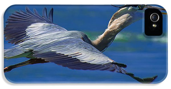 Fishing iPhone 5 Cases - Gliding Great Blue Heron iPhone 5 Case by Sebastian Musial