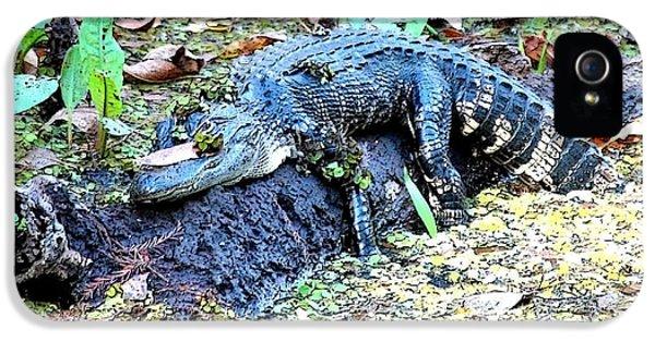 Hard Day In The Swamp - Digital Art IPhone 5 / 5s Case by Carol Groenen