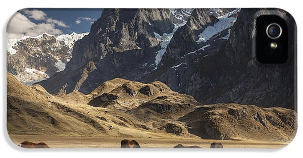 Mountain iPhone 5 Cases - Horses Grazing Under Siula Grande iPhone 5 Case by Colin Monteath