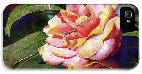 Florals iPhone 5 Cases - Karma Camellia iPhone 5 Case by Andrew King