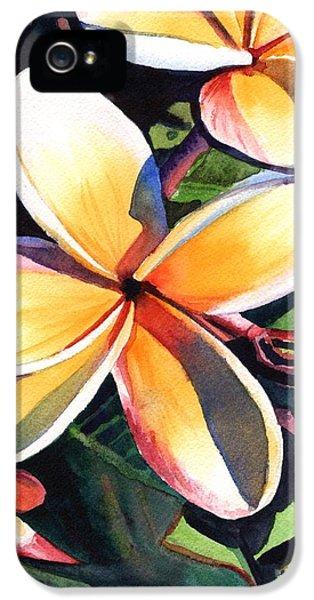 Plumerias iPhone 5 Cases - Kauai Rainbow Plumeria iPhone 5 Case by Marionette Taboniar