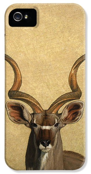 African iPhone 5 Cases - Kudu iPhone 5 Case by James W Johnson