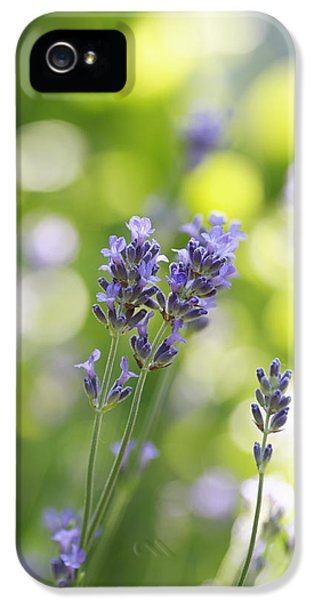 Pharmaceutical iPhone 5 Cases - Lavender Garden iPhone 5 Case by Frank Tschakert