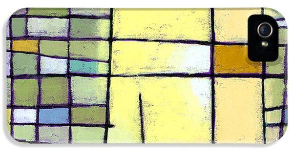 Grid iPhone 5 Cases - Lemon Squeeze iPhone 5 Case by Douglas Simonson