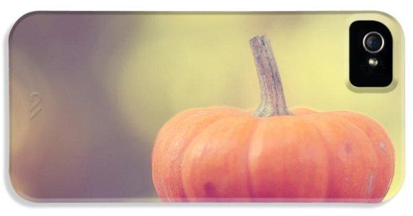 Little Pumpkin IPhone 5 / 5s Case by Amy Tyler