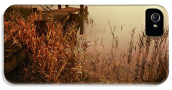 Colour Image iPhone 5 Cases - Loch Ard early mist  iPhone 5 Case by John Farnan