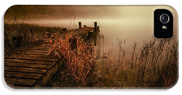 Colour Image iPhone 5 Cases - Loch Ard early morning mist iPhone 5 Case by John Farnan