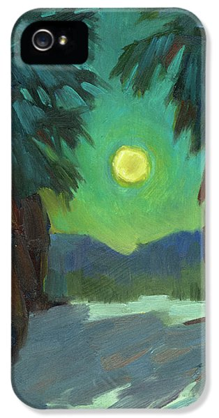 Moonrise iPhone 5 Cases - Moonrise iPhone 5 Case by Diane McClary