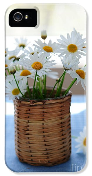 Indoors iPhone 5 Cases - Morning daisies iPhone 5 Case by Elena Elisseeva