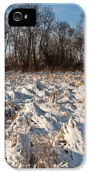 Restoration iPhone 5 Cases - Nachusa Grasslands Winter iPhone 5 Case by Steve Gadomski