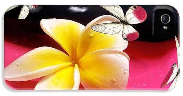 Yellow And White Plumeria Flower Frangipani iPhone 5 Cases - Nature in Orbit iPhone 5 Case by Kaye Menner