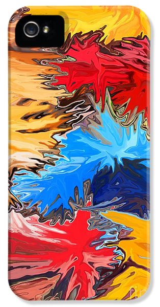 Fire Works iPhone 5 Cases - New Years iPhone 5 Case by Chris Butler