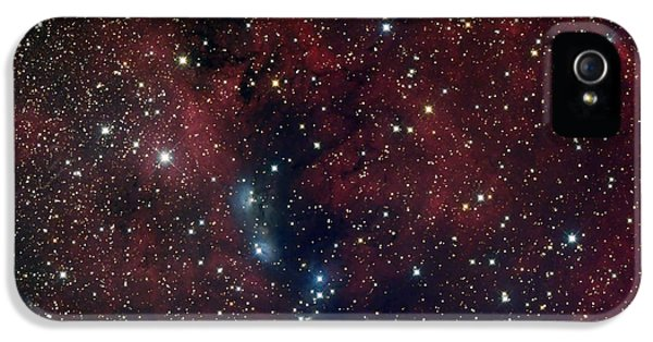 Astrophysics iPhone 5 Cases - Ngc 6914, Reflection Nebula In Cygnus iPhone 5 Case by Filipe Alves