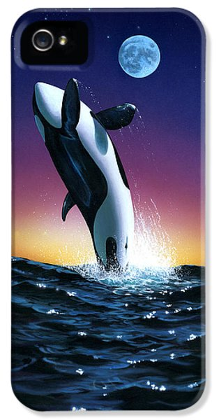 Whale iPhone 5 Cases - Ocean Leap iPhone 5 Case by MGL Studio - Chris Hiett
