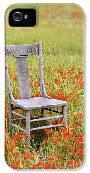 Chair iPhone 5 Cases - Old Chair in Wildflowers iPhone 5 Case by Jill Battaglia