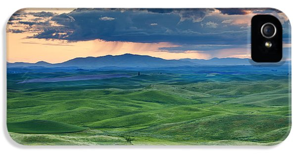 Green iPhone 5 Cases - Palouse Storm iPhone 5 Case by Mike  Dawson