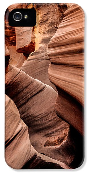 National Monuments iPhone 5 Cases - Peek a Boo iPhone 5 Case by Chad Dutson