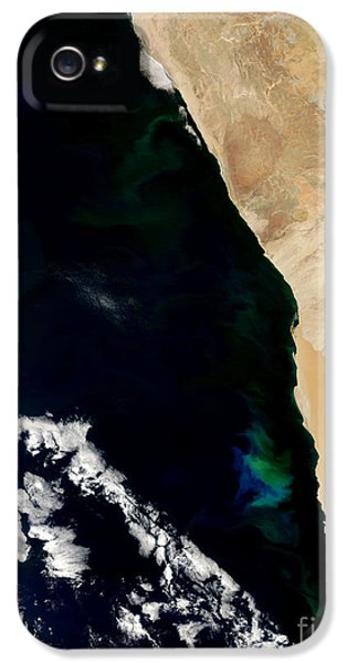 Phytoplankton iPhone 5 Cases - Phytoplankton Bloom Off Nambia iPhone 5 Case by Nasa