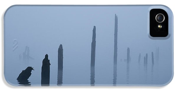 Asymmetrical iPhone 5 Cases - Pier Pilings in Water iPhone 5 Case by David Buffington