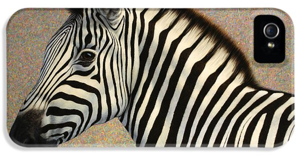 Stripes iPhone 5 Cases - Principled iPhone 5 Case by James W Johnson