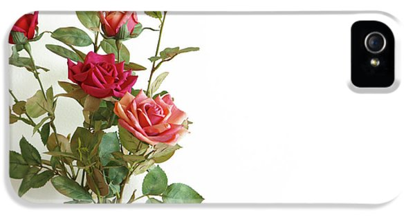 Anniversary iPhone 5 Cases - Roses Bouquet iPhone 5 Case by Carlos Caetano