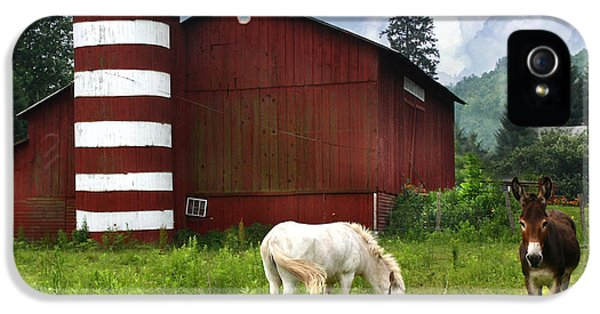 Donkey iPhone 5 Cases - Rural America iPhone 5 Case by Lori Deiter