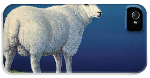 Ewe iPhone 5 Cases - Sheep at the edge iPhone 5 Case by James W Johnson