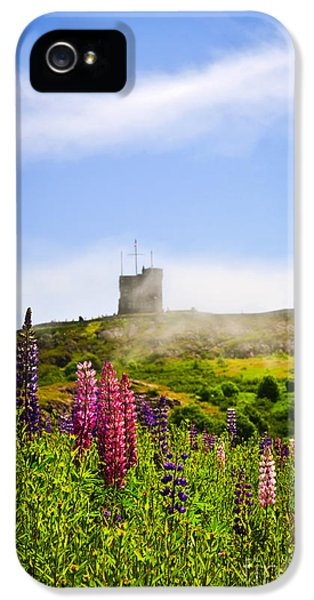 Lupin iPhone 5 Cases - Signal Hill in St. Johns Newfoundland iPhone 5 Case by Elena Elisseeva