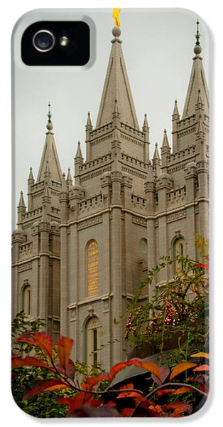 Slc iPhone 5 Cases - SLC Temple Angle iPhone 5 Case by La Rae  Roberts