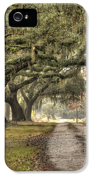 Drive iPhone 5 Cases - Southern Drive Live Oaks and Spanish Moss iPhone 5 Case by Dustin K Ryan