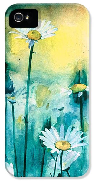 Splash Of Daisies IPhone 5 / 5s Case by Cyndi Brewer