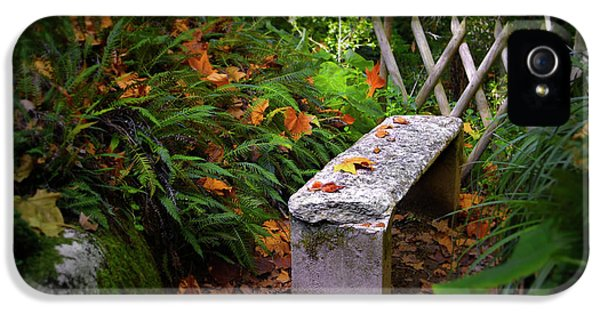 Environment Design iPhone 5 Cases - Stone Bench iPhone 5 Case by Carlos Caetano