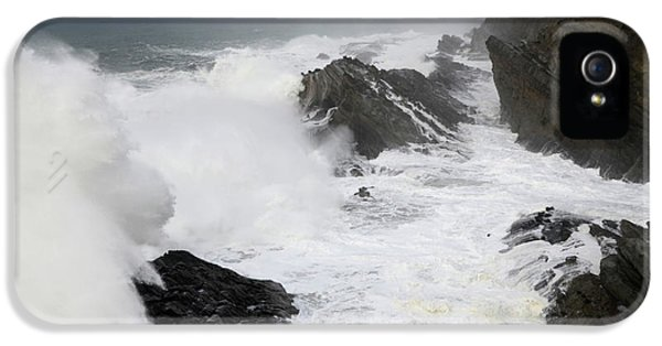 Shore Acres iPhone 5 Cases - Storm on the Oregon Coast 2 iPhone 5 Case by Bob Christopher