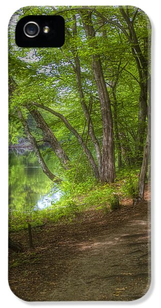 Forrest iPhone 5 Cases - Summer Walk iPhone 5 Case by Joann Vitali