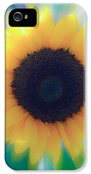 Cone Flowers And Butterflies iPhone 5 Cases - Sun Shine Sunflower iPhone 5 Case by Steve McKinzie
