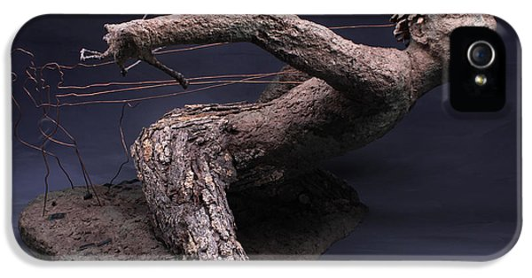 Ent iPhone 5 Cases - Technological Advances iPhone 5 Case by Adam Long