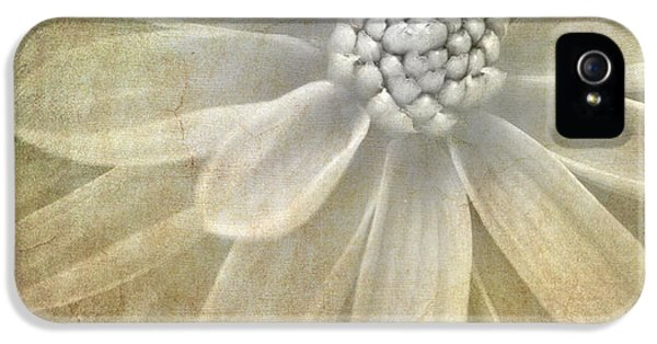 Florals iPhone 5 Cases - Textured Dahlia iPhone 5 Case by Meirion Matthias