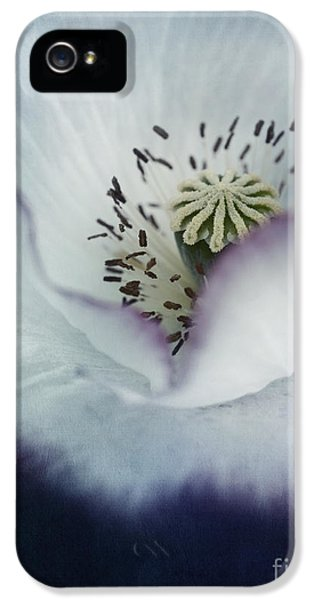 Pistil iPhone 5 Cases - The Heart Of A Poppy iPhone 5 Case by Priska Wettstein
