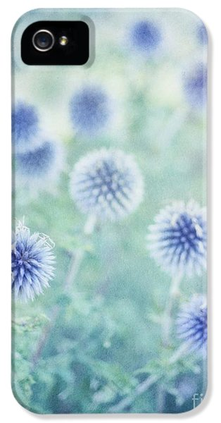 Thistle Dreams IPhone 5 / 5s Case by Priska Wettstein