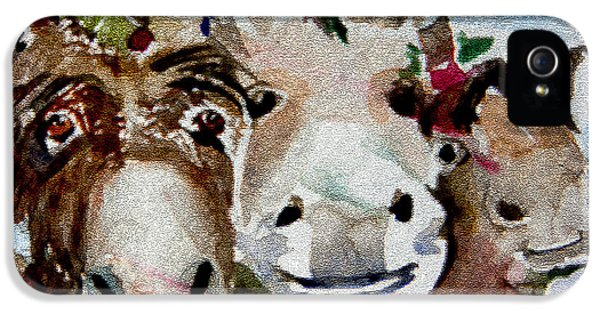 Donkey iPhone 5 Cases - Three Christmas Donkeys iPhone 5 Case by Mindy Newman