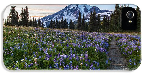 Lupin iPhone 5 Cases - Through the Flowers iPhone 5 Case by Mike Reid