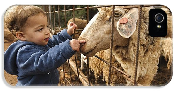 Children Only iPhone 5 Cases - Toddler With A Sheep iPhone 5 Case by Photostock-israel