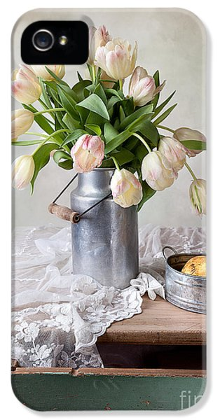Tulips iPhone 5 Cases - Tulips and Pears iPhone 5 Case by Nailia Schwarz
