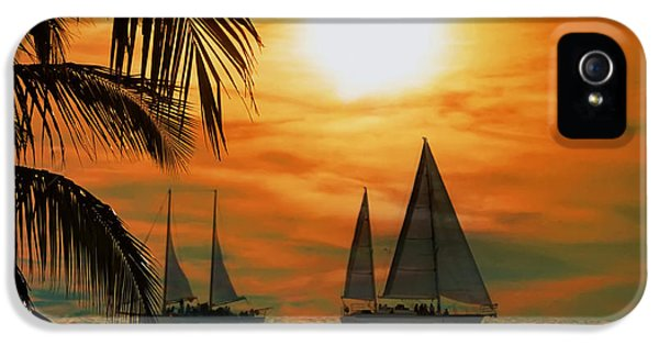 Bay iPhone 5 Cases - Two Ships Passing in the Night iPhone 5 Case by Bill Cannon