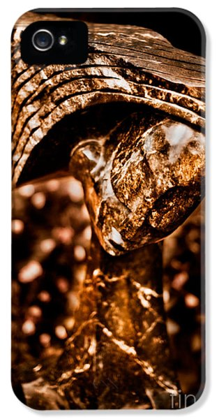 Patiently iPhone 5 Cases - Waiting Patiently iPhone 5 Case by Venetta Archer